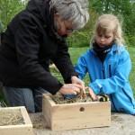 Børn, bier og sommerfugle 29. maj 2021