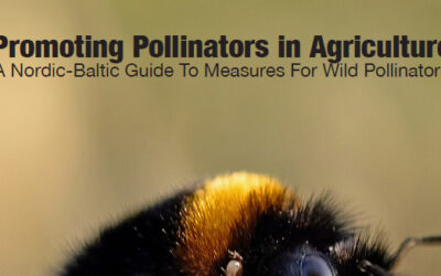 Promoting Pollinators in Agriculture